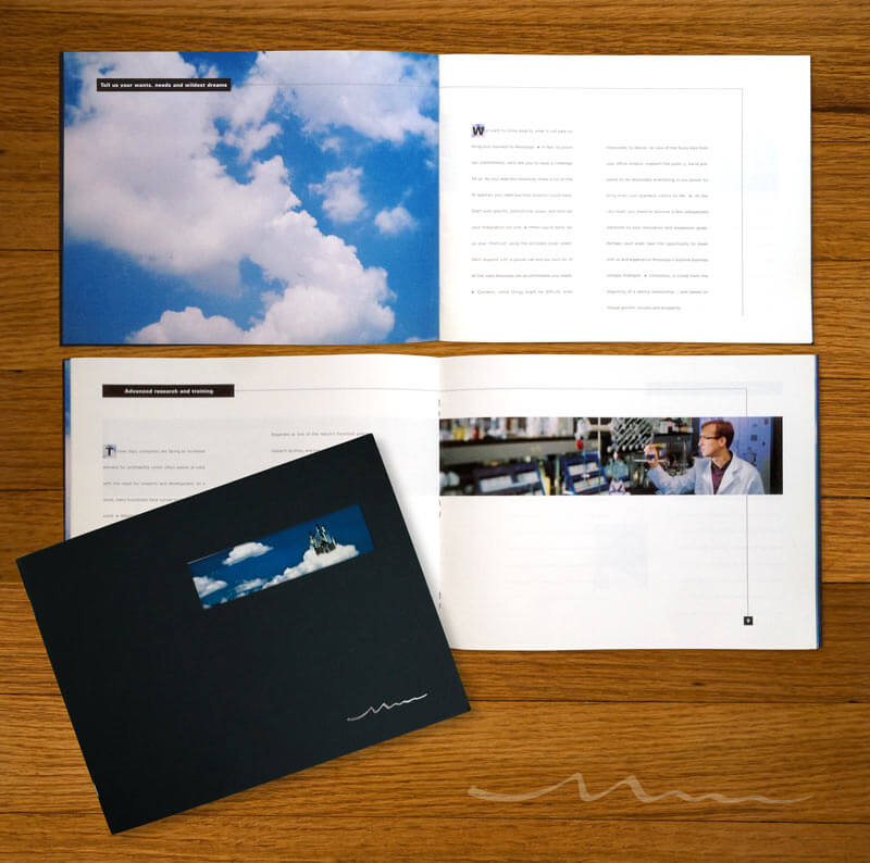 Economic Development Brochure Design