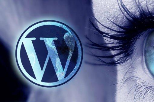 WordPress logo and closeup of human eye