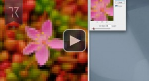 How To Create Color Palette In Photoshop From ANY Photo