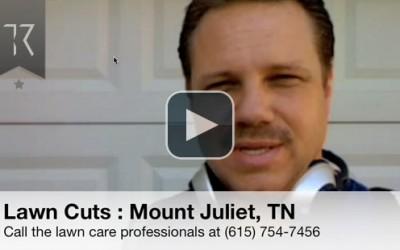 Lawn Cuts Professional Lawn Care