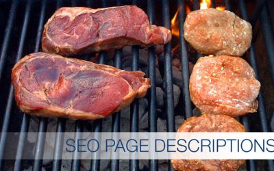 Learn SEO Basics Part 4: Website Page Descriptions