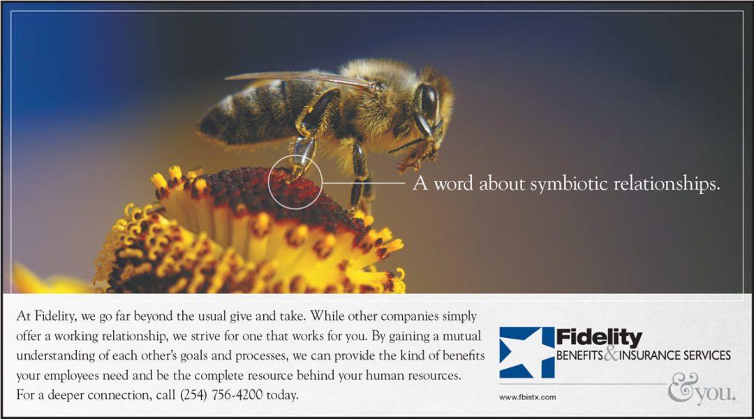 Newspaper Print Ad - Fidelity Insurance