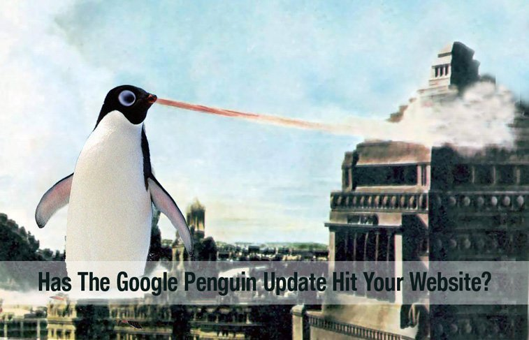 How Google's Penguin Algorithm Update Affects Your Business