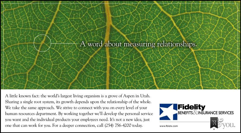 Closeup of Aspen leaf. Headline: A word about measuring relationships