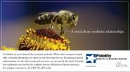 print-ad-fidelity-insurance-symbiotic
