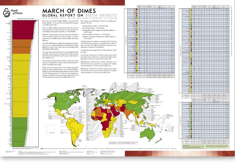 March of Dimes Global Birth Defects Poster Design