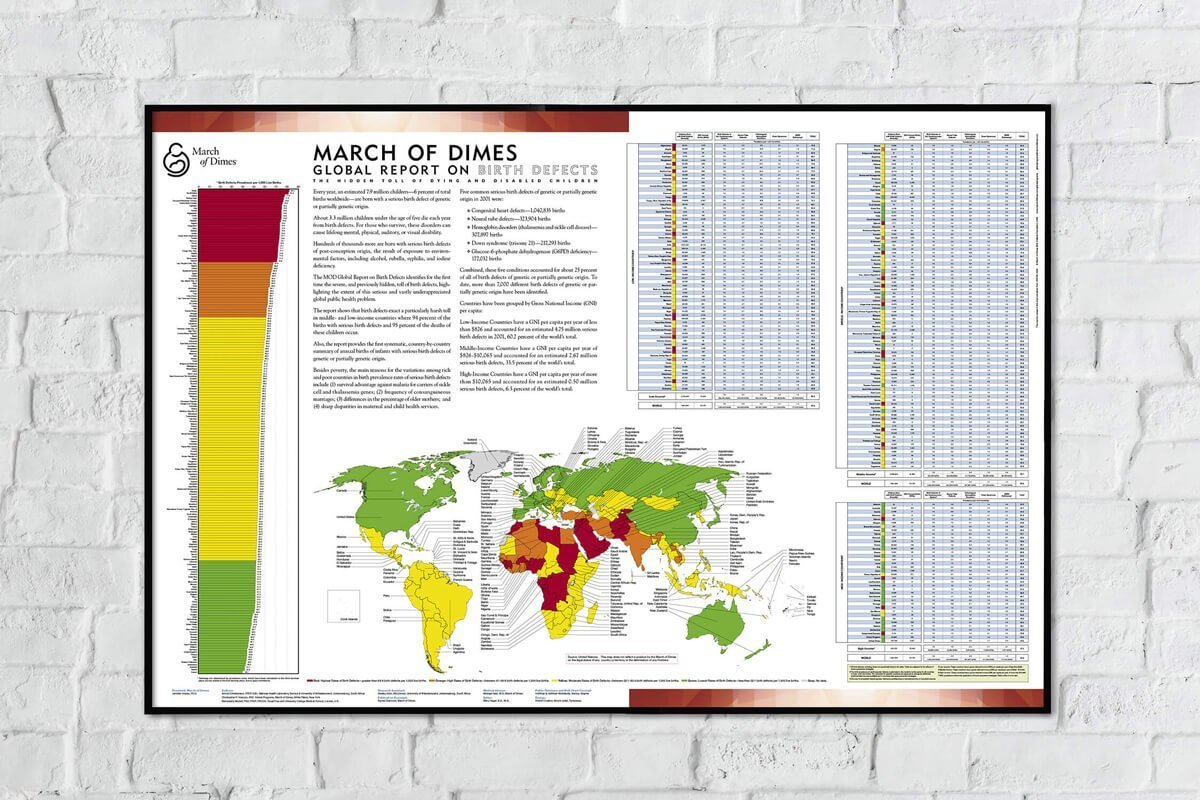 March of Dimes Global Report on Birth Defects - Sample Spread