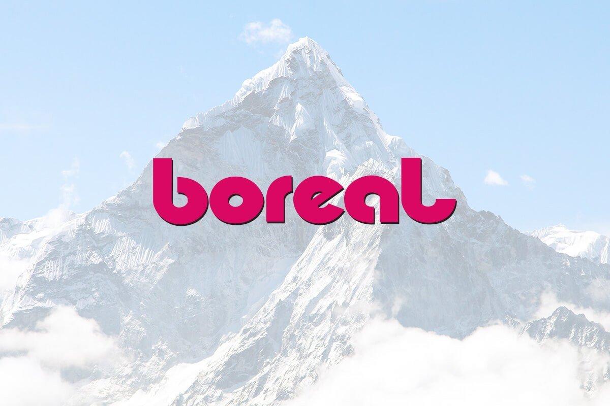 Boreal Climbing Shoes