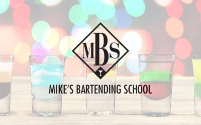 Mikes Bartending School