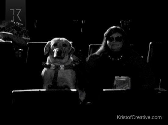 Crossroads Film Festival TV Commercial Dog