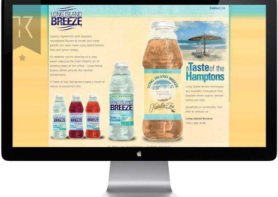 website-design-long-island-breeze_800_wm