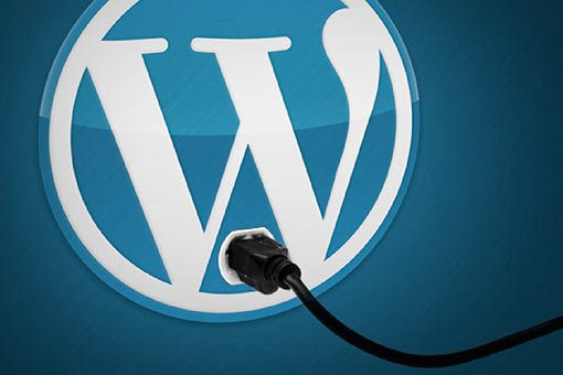 Install WordPress Software